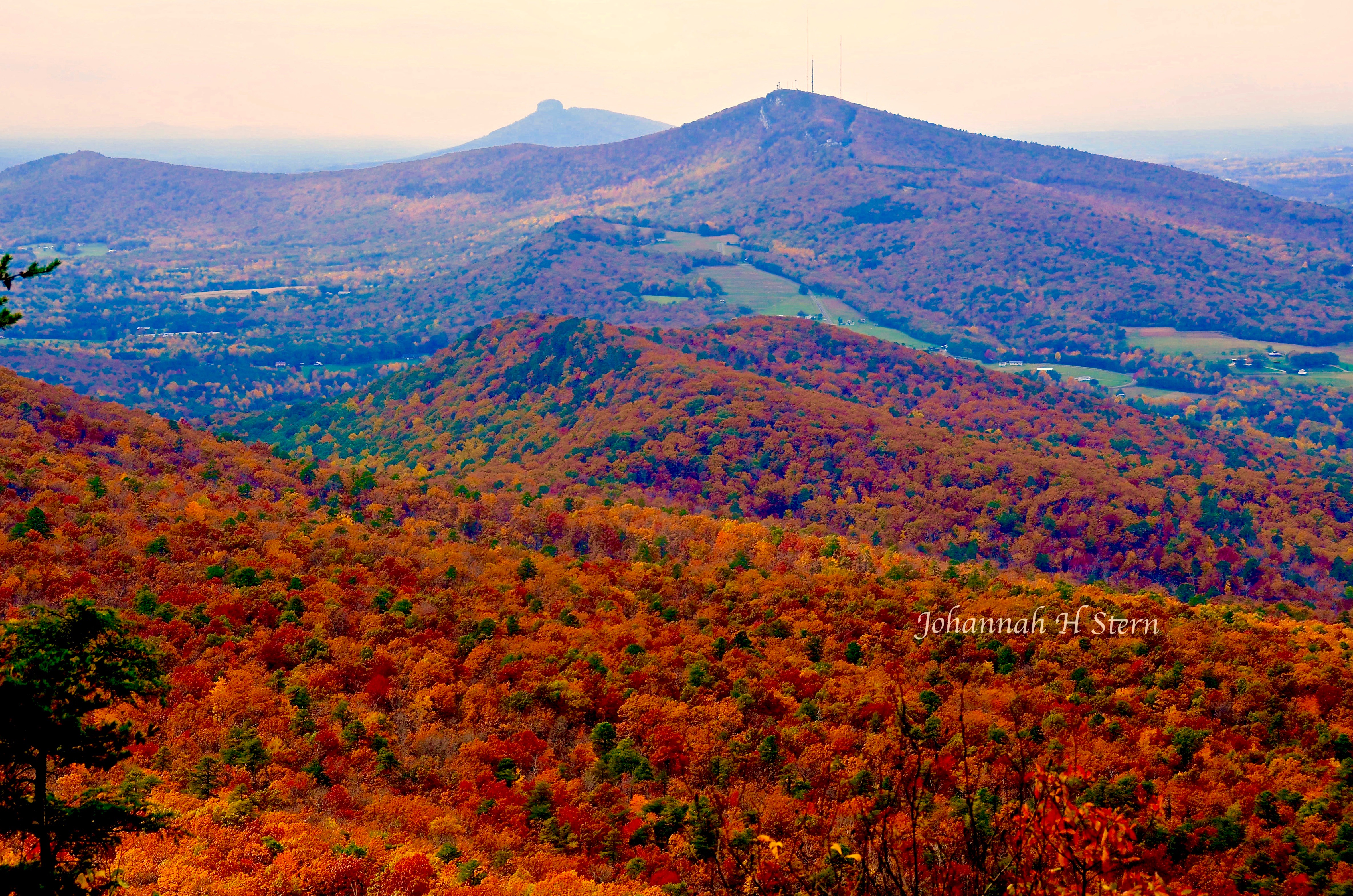 1_Autumn-colors-From-HARO-looking-to-PIMO