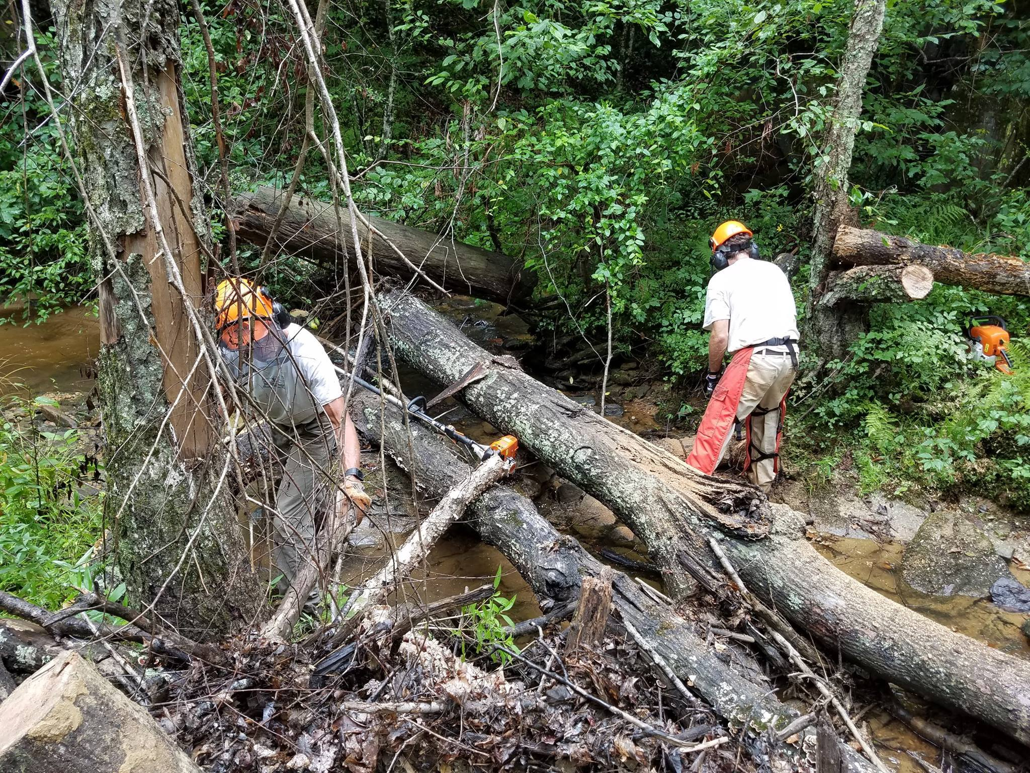 FSM-Trail-Crew-clearing-a-Trail