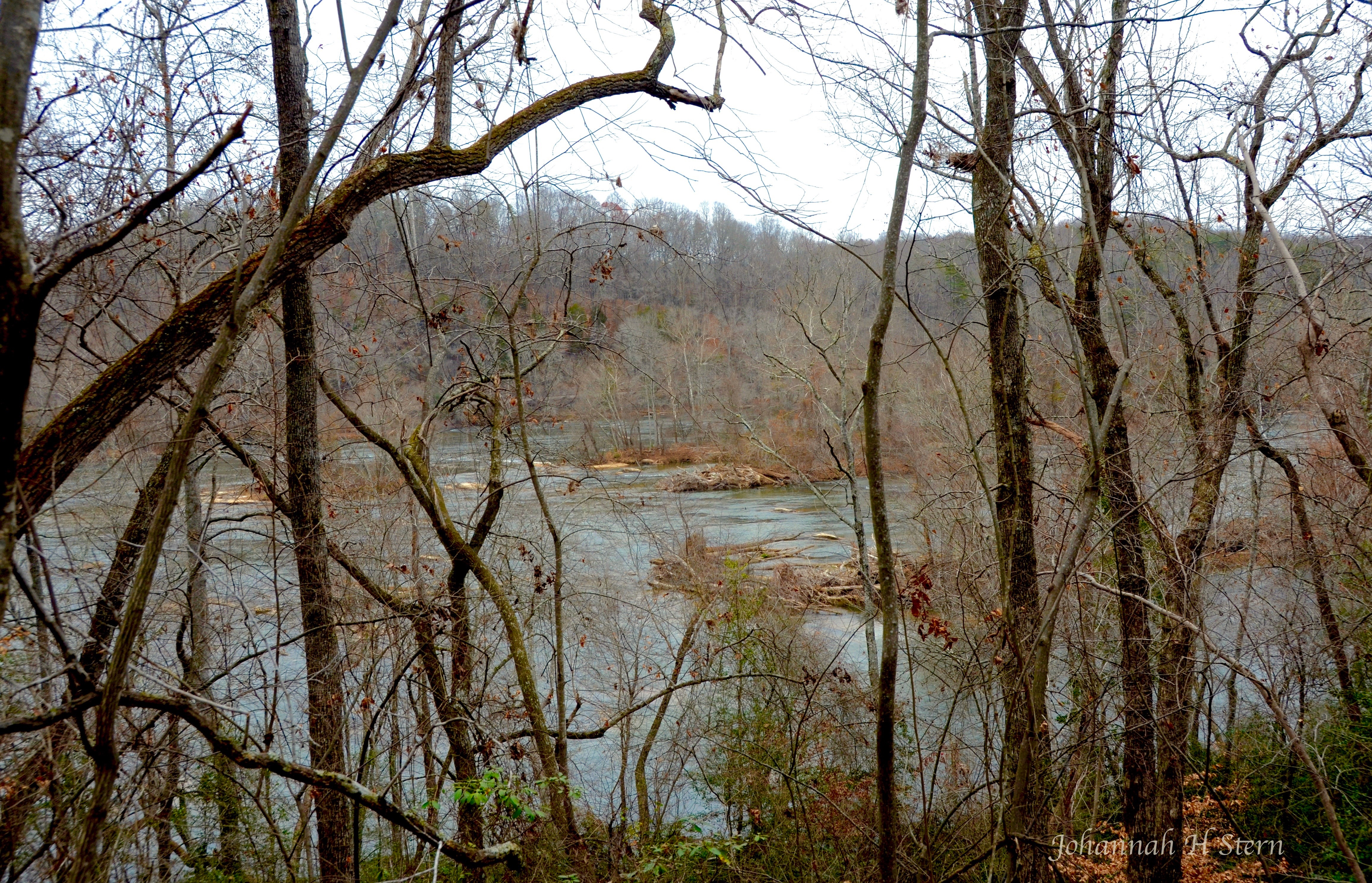 Ivy-Bluff-Tail-Yadking-River-PIMO