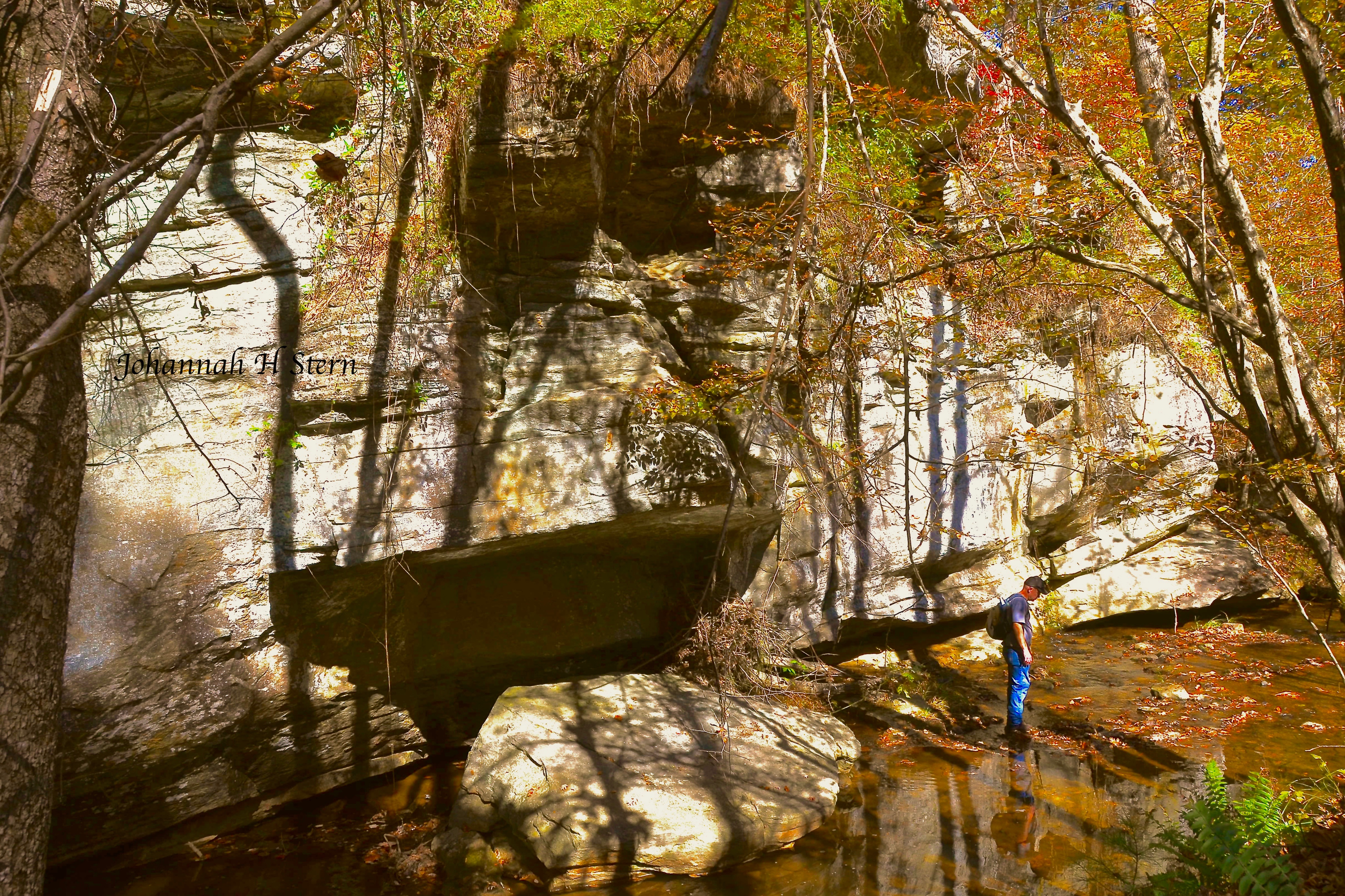 Palisades at Vade Mecum in Hanging Rock State Park.  Photo by Johannah H. Stern.