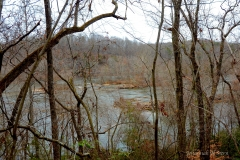 Ivy Bluff Tail - Yadkin River. Photo by Johannah H. Stern.